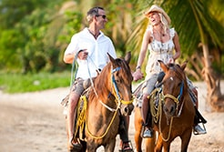 Mazatlan Horseback Riding Tours